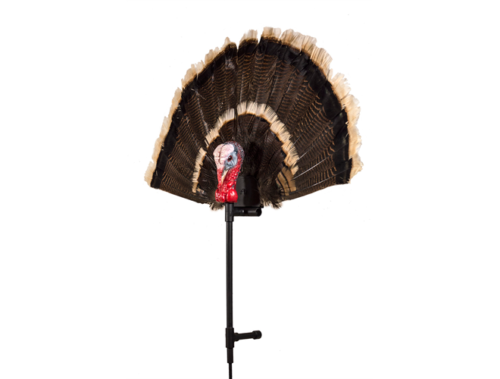 Gobbler Fan Turkey Decoy